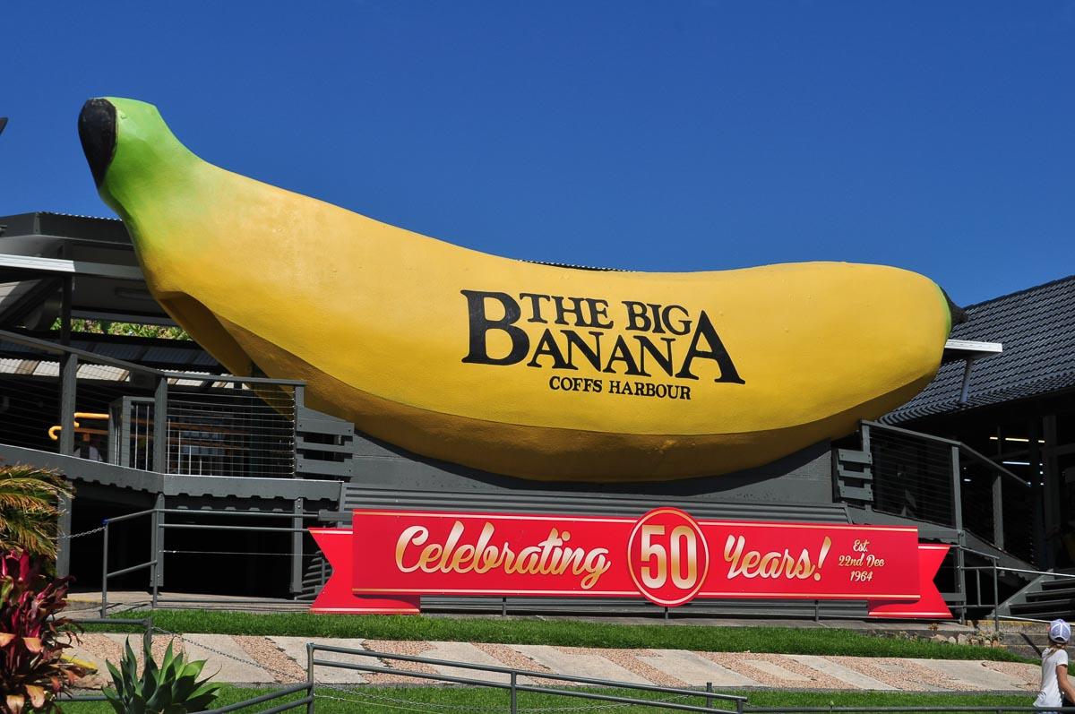 Big_Banana_50_Years
