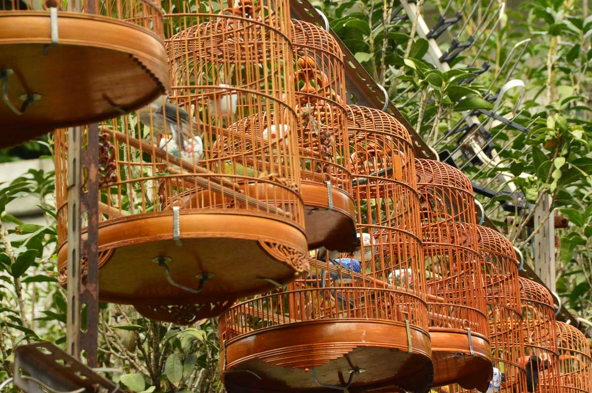 birdcages at bird market in mongkok hong kong