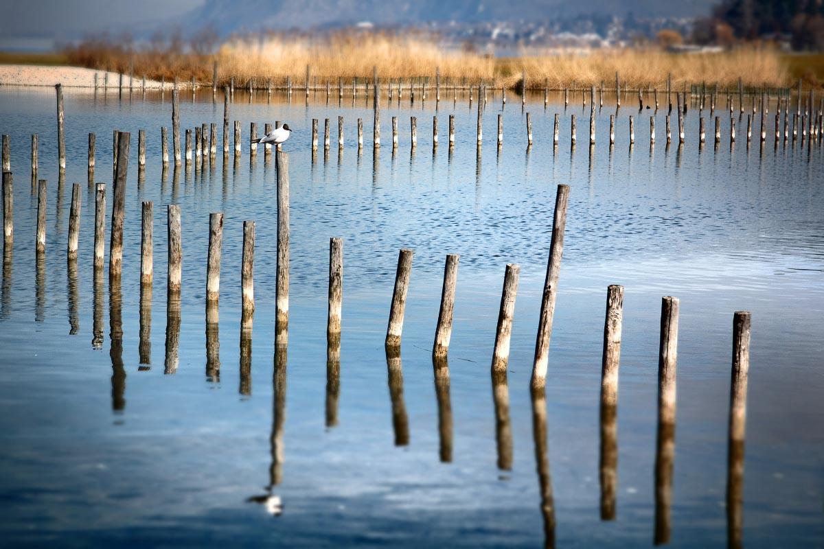 Lac du Bourget France