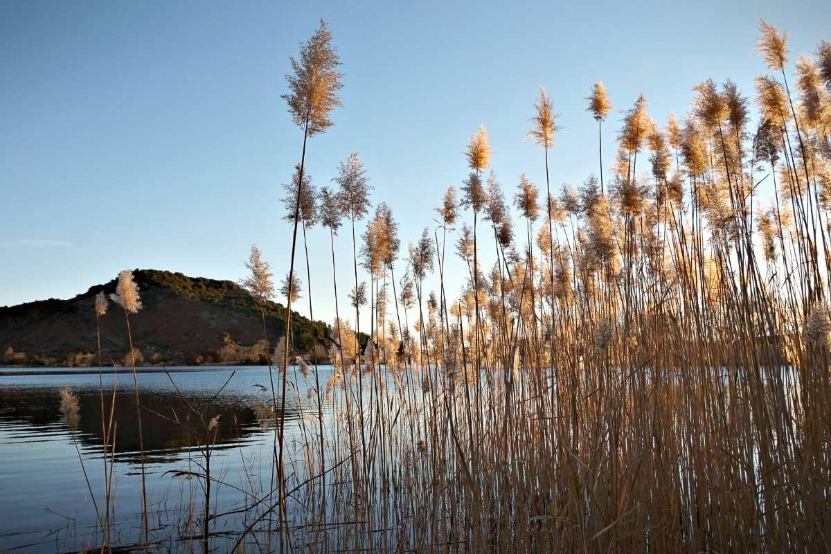 Lac du Salagou france