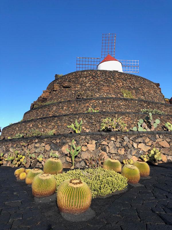 Lanzarote cactus garden with windmill