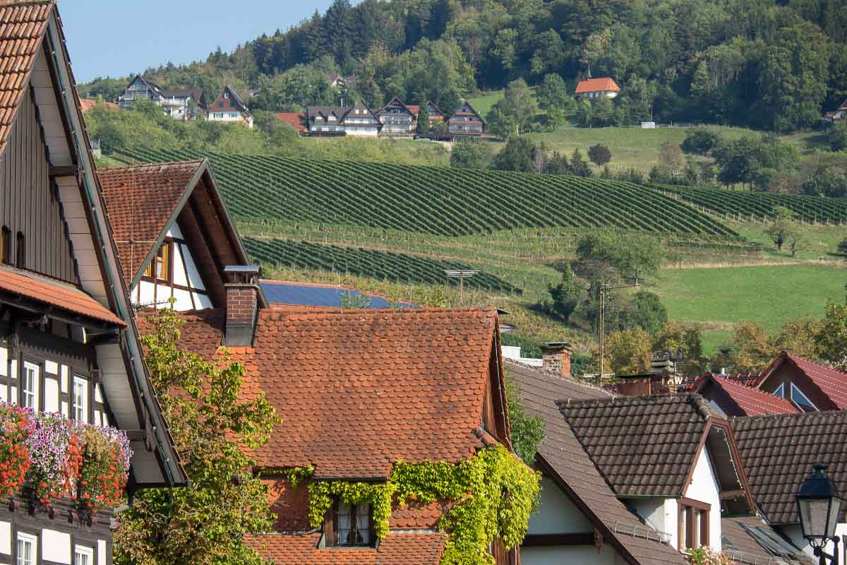 Black Forest Rooftops Germany
