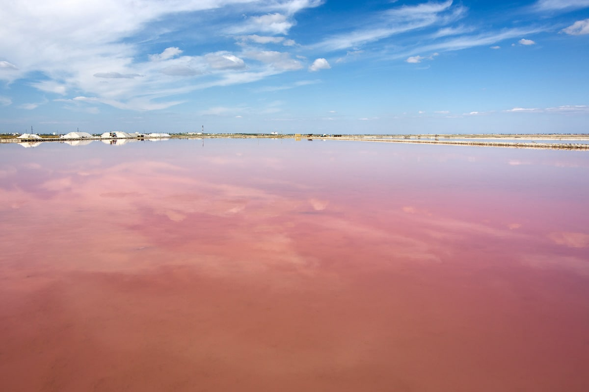Pink lakes of the Camargue France