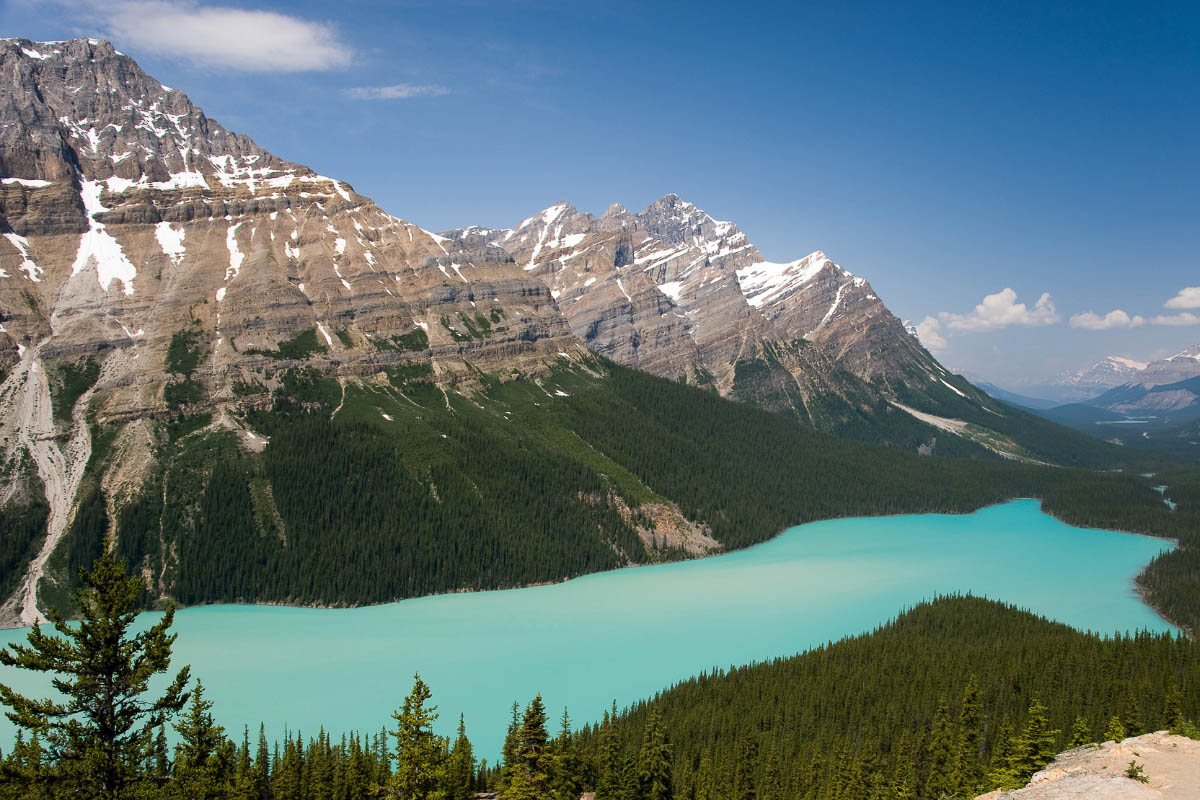 canadian lake peyto lake alberta