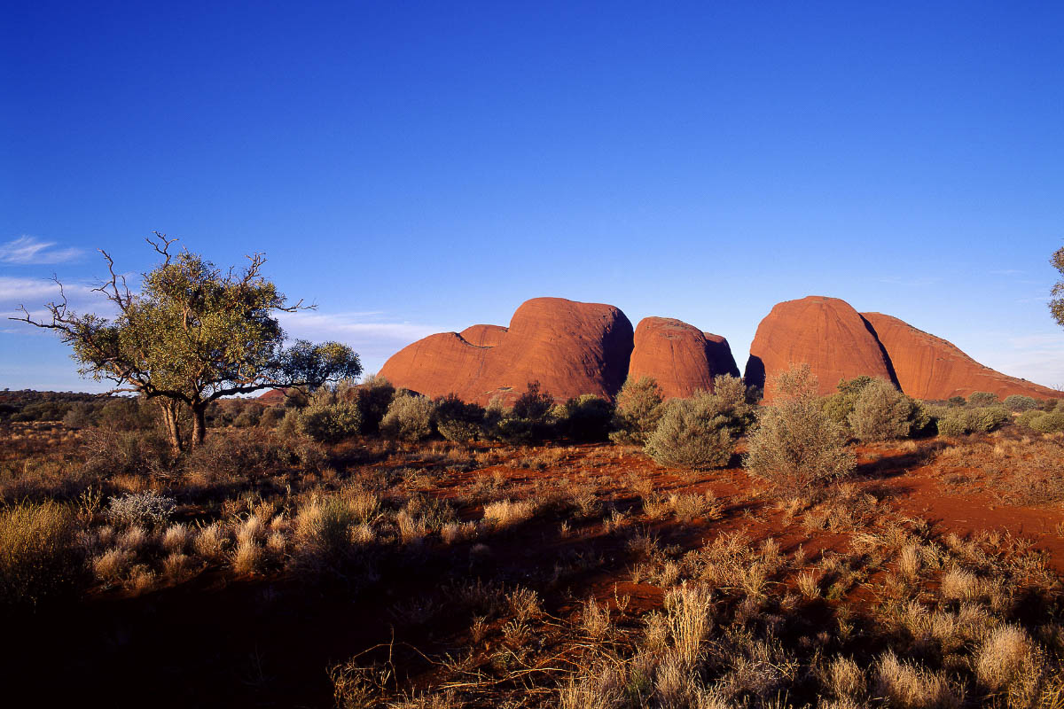 The olgas northern territory