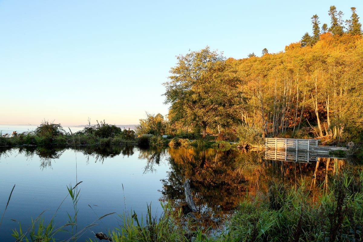 golden gardens park seattle