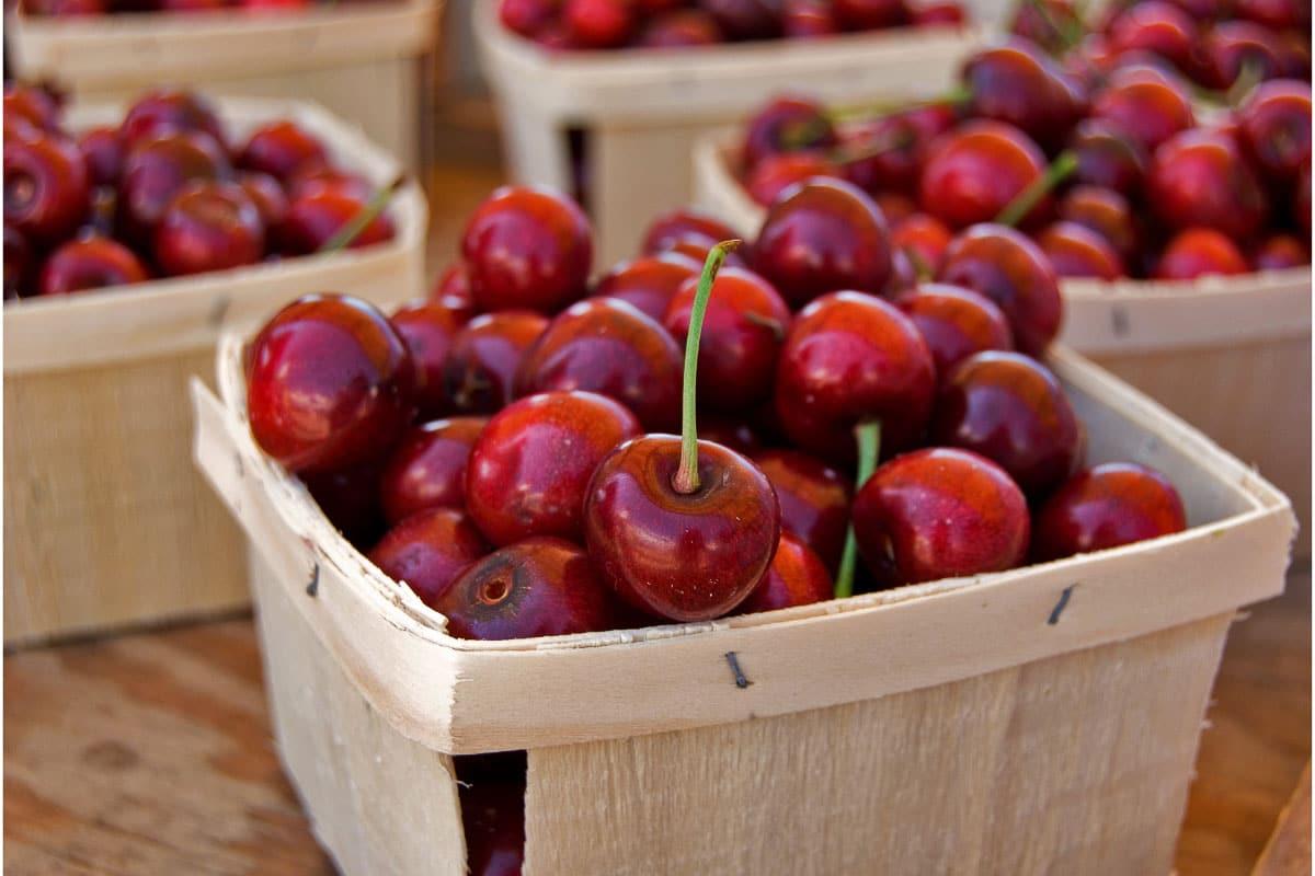 multiple punnets of cherries