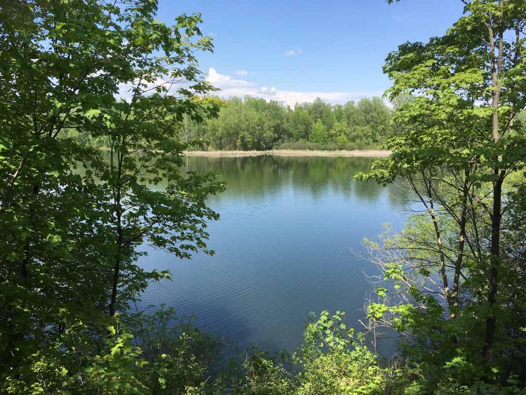 McKay Lake Rockcliffe