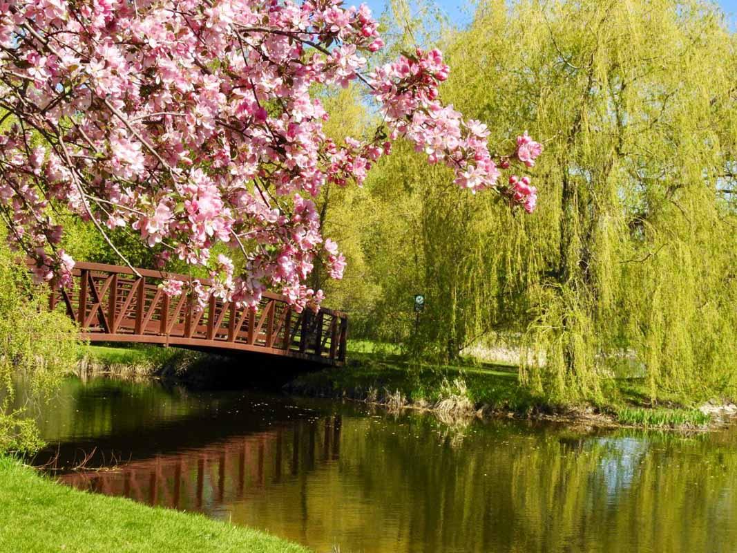 arboretum ottawa