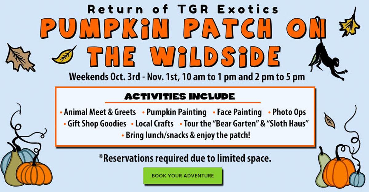 TGR Exotics pumpkin patch