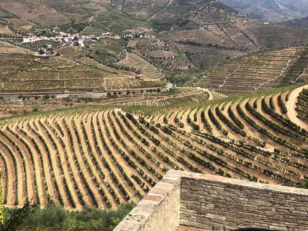 douro valley hills and vineyards