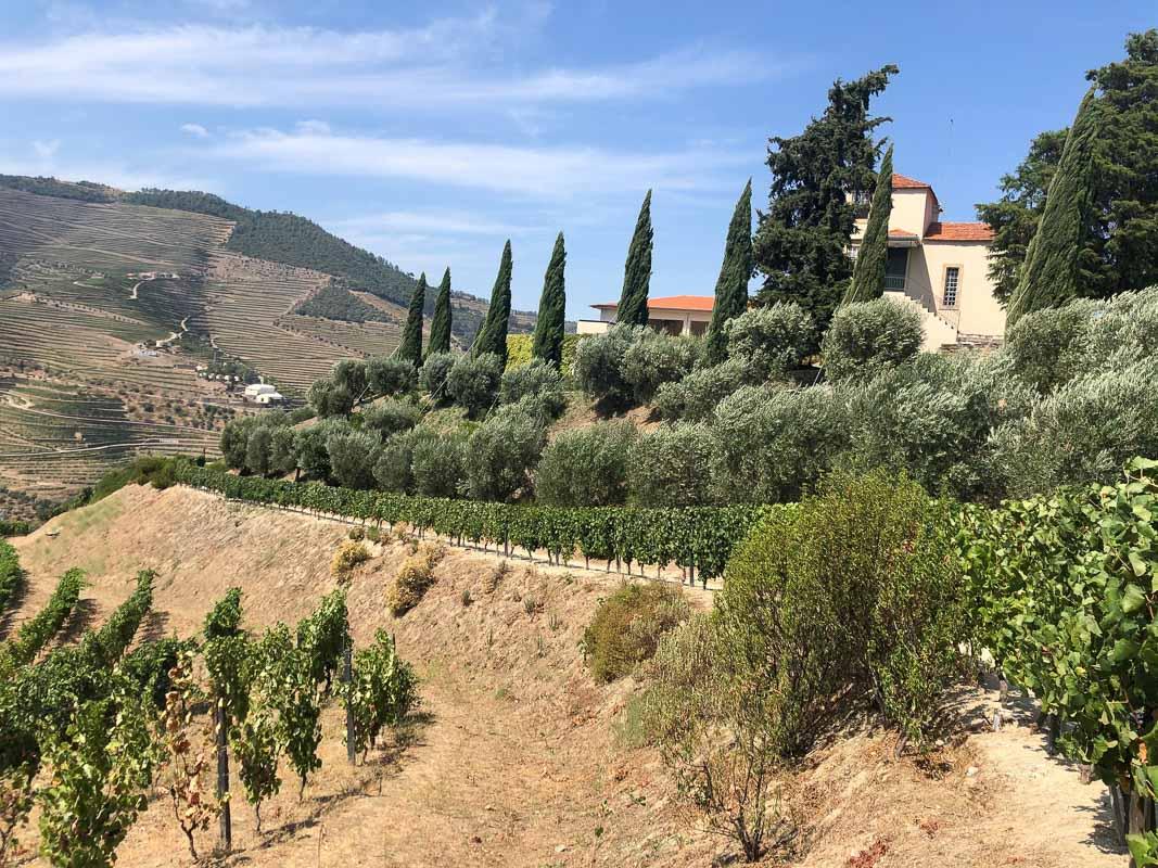 douro valley sandman view and estate