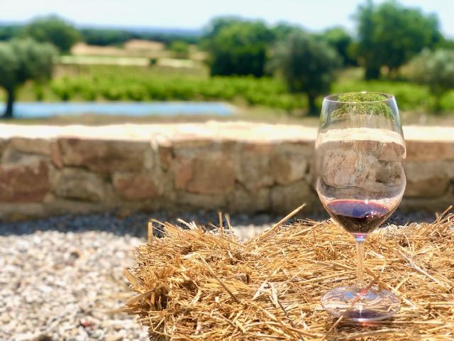 red wine at fitapreta