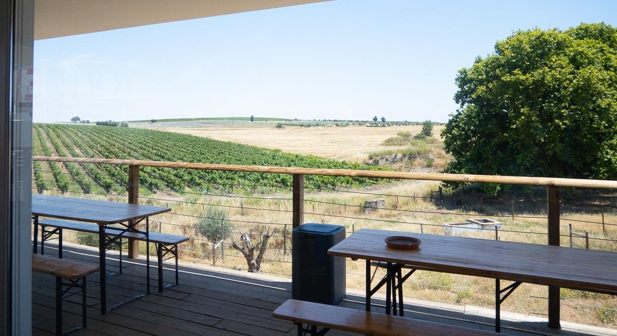 view outside ervideira winery alentejo